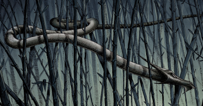 bamboo-dragon